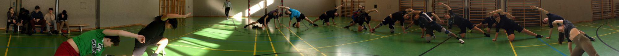 Amerling-Sport